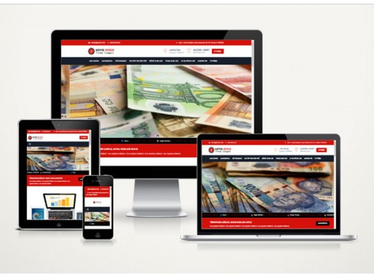 Hazır Web Site Money