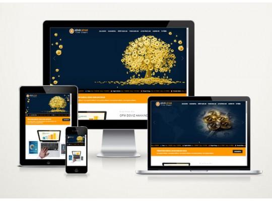 Hazır Web Site Cash